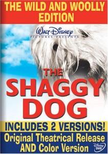 ShaggyDogWildWoolly